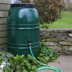 rainwater collection barrel