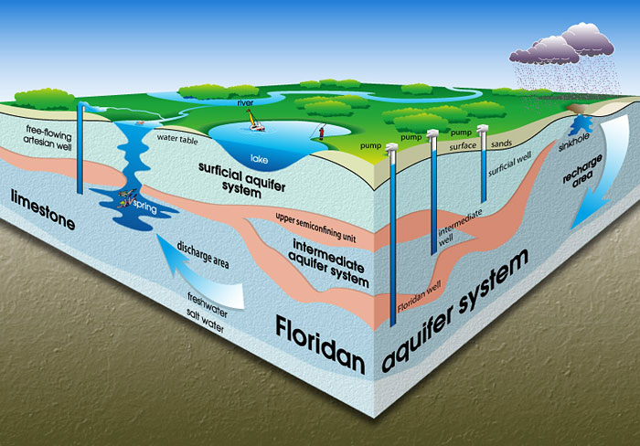 The Florida Aquifer System